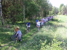 2 Dukty leśne koło Spóroka.jpeg